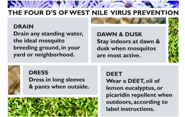 Our West Nile Virus Prevention Policy