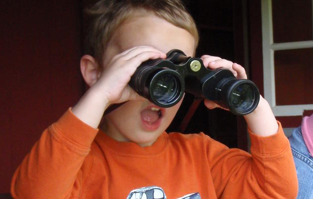 Choosing and Using Binoculars