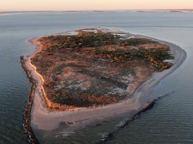 Audubon Texas selected as 2021 Conservation Wrangler