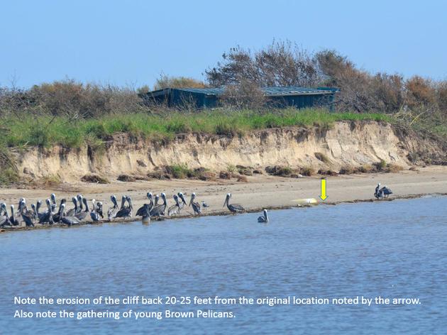 Sundown Island Harvey Damage