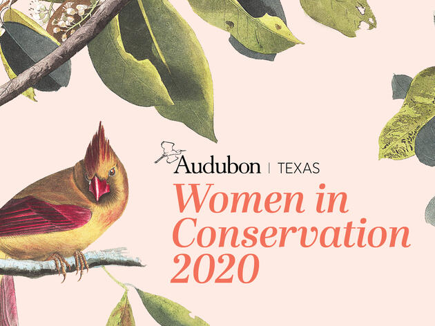 Video: Audubon Texas Women in Conservation Virtual Event, featuring the 2020 Terry Hershey Awards