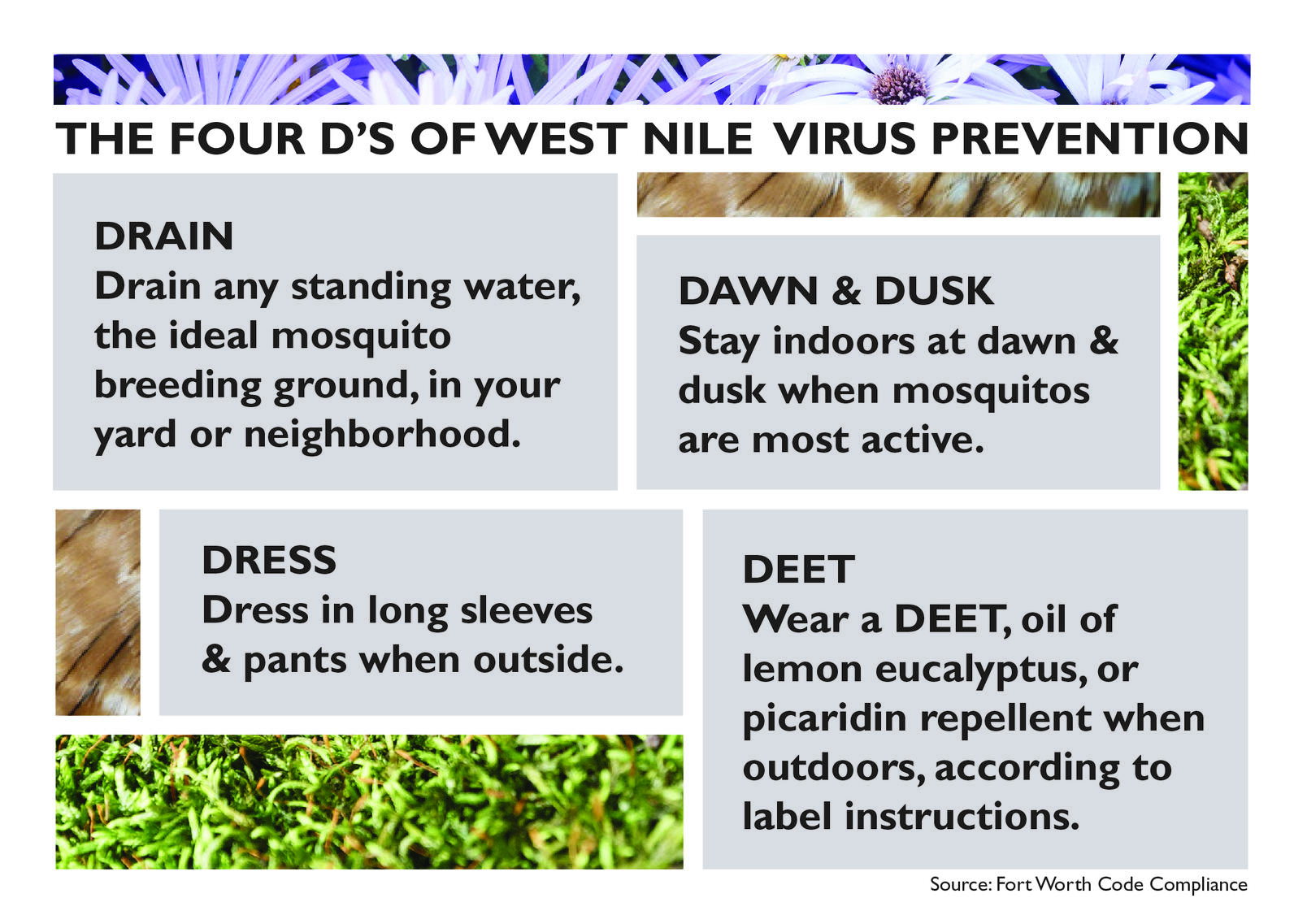 our west nile virus prevention policy audubon texas